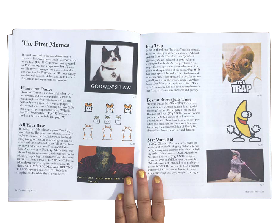 The Meme Textbook   book by selina gerosa, graphic and web